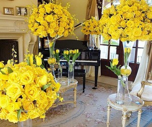 beatiful, yellow, and color image
