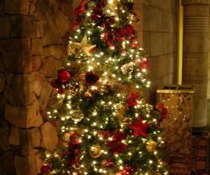 christmas tree and lights image