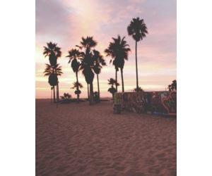 california and beach image