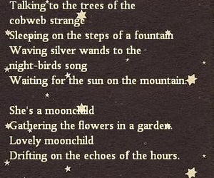 poem, moon, and poetry image