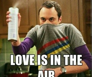 love, sheldon, and funny image