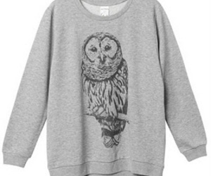clothes, owl, and pretty image