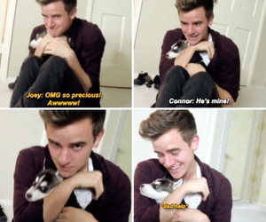tumblr, connorfranta, and love image