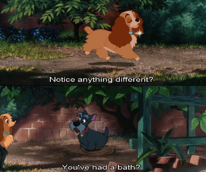 boy, disney, and dog image