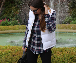 blogger, flannel, and forever 21 image
