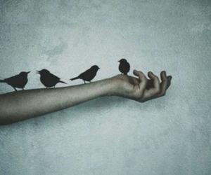 bird, indie, and grunge image