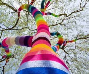 tree, colors, and colorful image