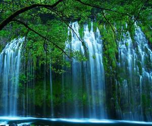 amazing, nature, and waterfall image