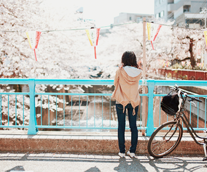 girl, japan, and sakura image