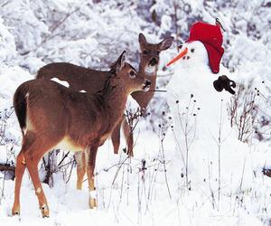 snowman, winter, and deer image
