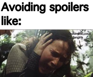 funny, spoilers, and hunger games image
