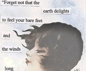 quotes, wind, and kahlil gibran image