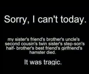 funny, tragic, and sorry image