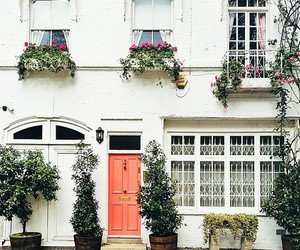 chic, london, and roses image