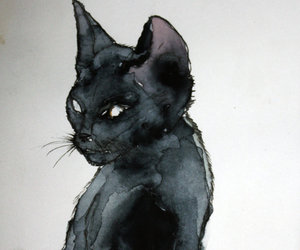 cat, art, and black image