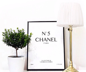 chanel and interior image