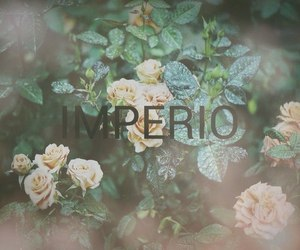 harry potter, magic, and império image