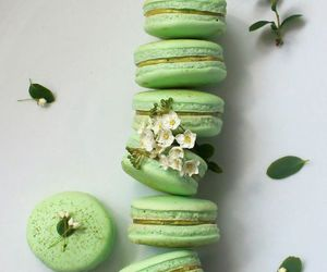 dessert, green, and macarrons image