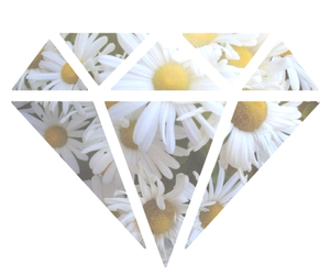 diamond, flowers, and hipster image