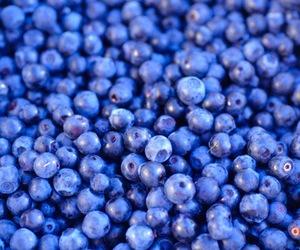 blueberry, blue, and fruit image