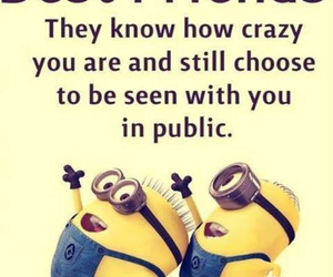 minions, friends, and crazy image