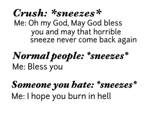crushes, funny, and hate image