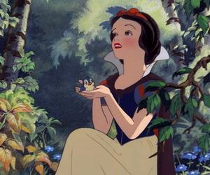 bluebird, photo, and snow white image