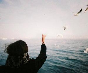 vintage, sea, and bird image