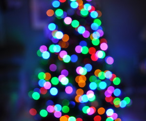 christmas tree, lights, and pretty image