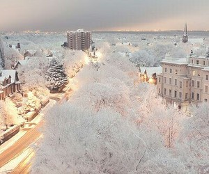 snow, town, and beautiful snowy fir image