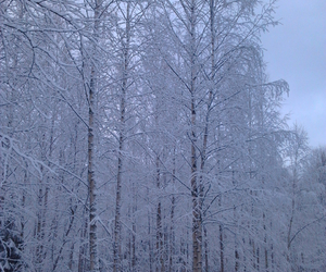 finland and winter image