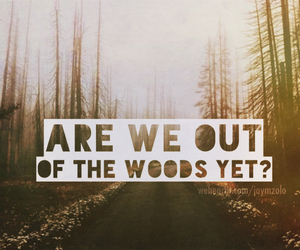 forest, indie, and quotes image