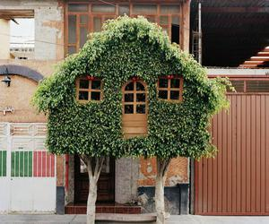 green, tree, and roof image