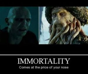 voldemort, funny, and harry potter image