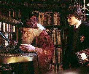 dumbledore image
