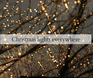 christmas, christmas lights, and winter image