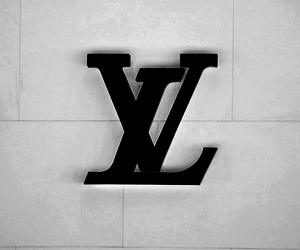Louis Vuitton, fashion, and LV image