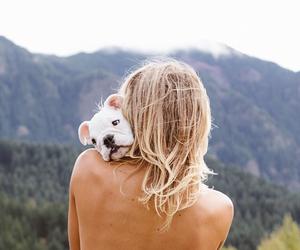 blond, green, and bulldog image