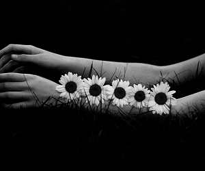 flowers, arms, and hands image