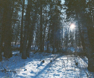 snow, indie, and photography image