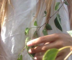 plants, indie, and aesthetic image