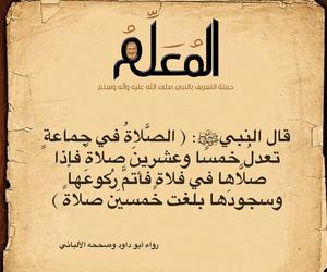 arabic, muhammad, and عربي image