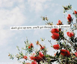 quote, flowers, and promise image
