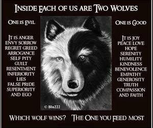 wolf, good, and quotes image