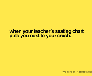 crush and text image