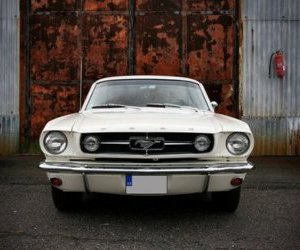mustang and car image