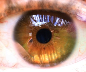 eyes, girl, and look image