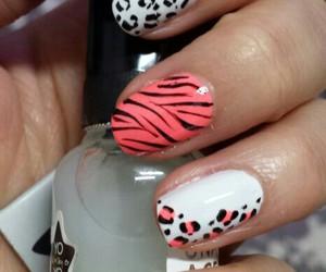 nails, nail art, and nail art animal print image