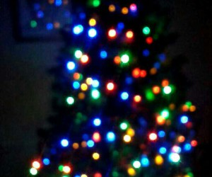 arbol, christmas, and colors image