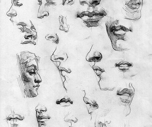 nose, art, and sketch image